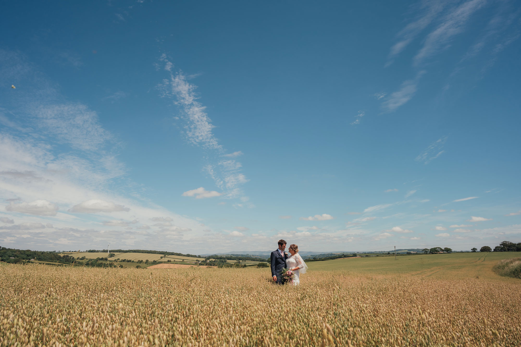 a wife and husband kiss in a Cornish field of corn on their wedding day