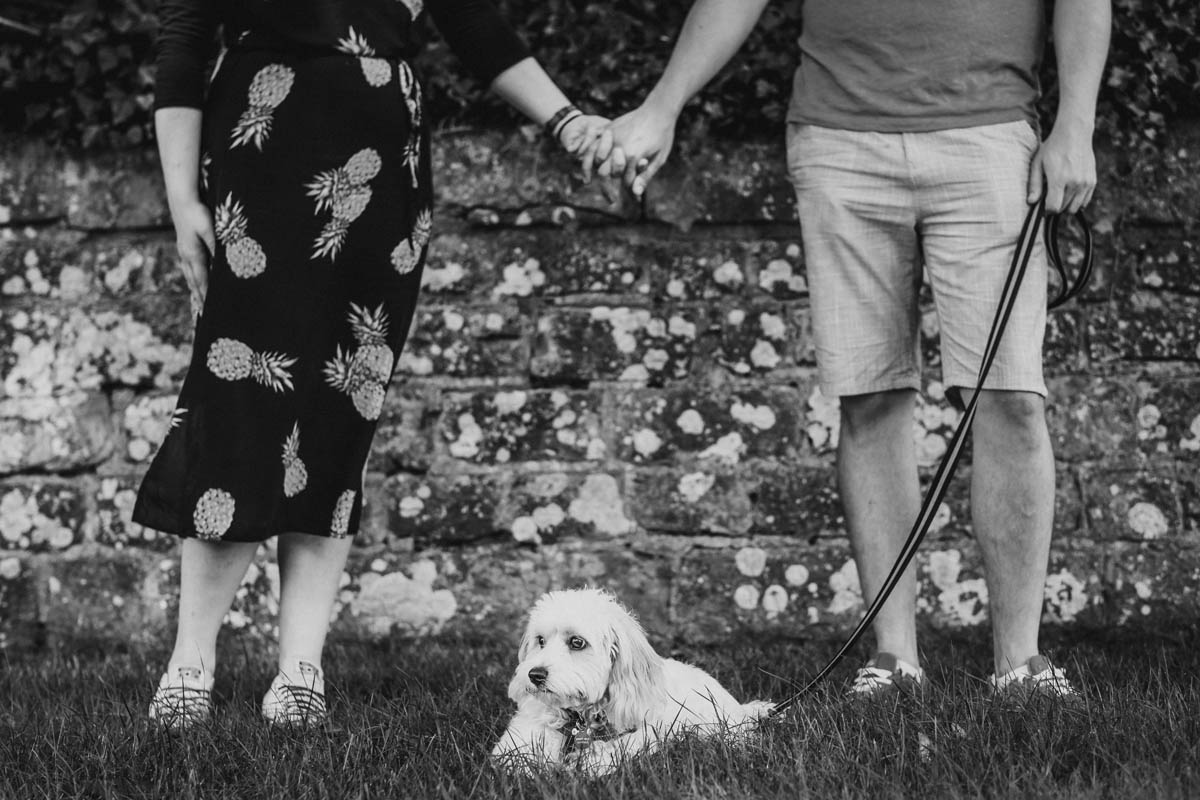 a couple hold hands with their dog Rolo